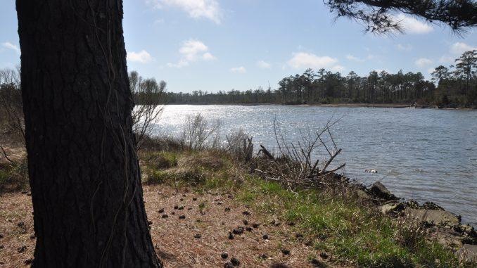 The waterway from Bock Marine