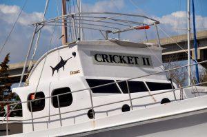 The Cricket II
